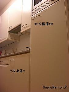 しょぼ冷蔵庫1