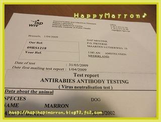 抗体検査1