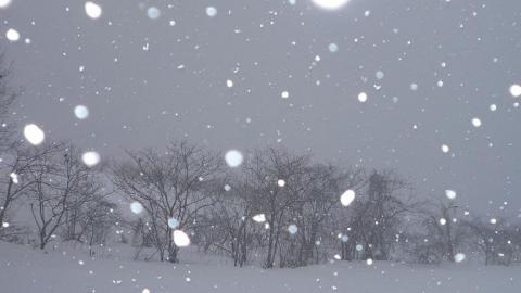 白の密度①