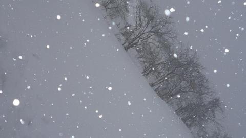 白の密度②