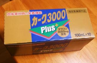 P5031415_convert_20090503105131.jpg