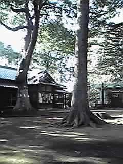 女体神社 社務所