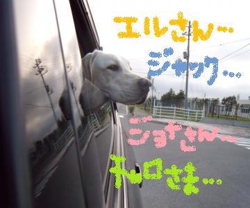 車から外ぽーーっ