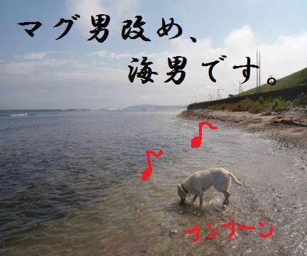 !!!!海です