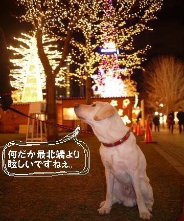 クリスマスなマグ男