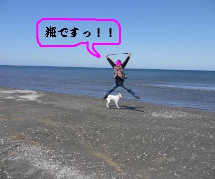 海だよー!