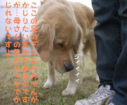 20101013-6.jpg