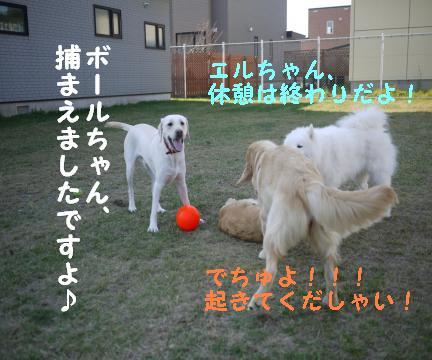 20101015-5.jpg
