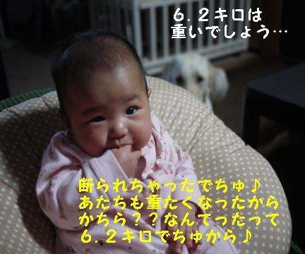 20101023-5.jpg
