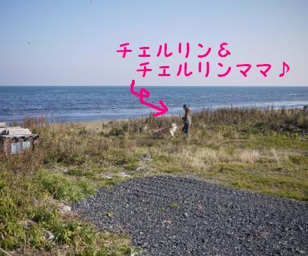 20101101-1.jpg