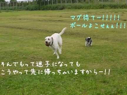 20110716-4.jpg