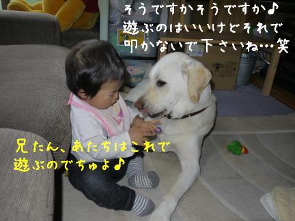 20110716-9.jpg