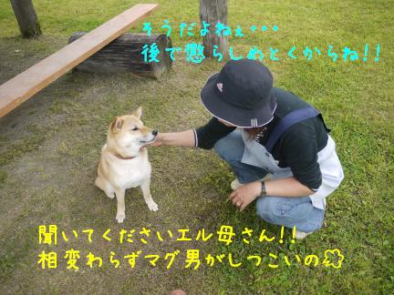 20110717-1.jpg