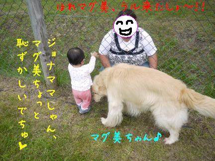 20110717-6.jpg