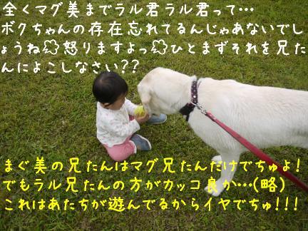 20110717-7.jpg