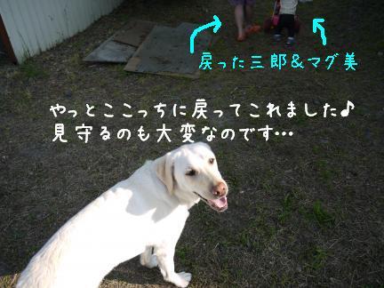 20110727-8.jpg