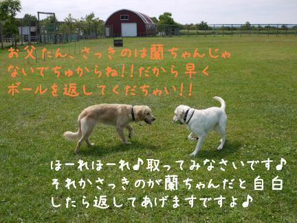 20110801-7.jpg