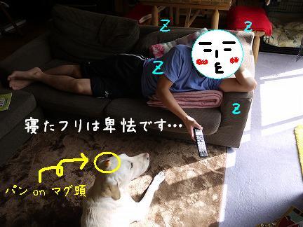 20110924-3.jpg