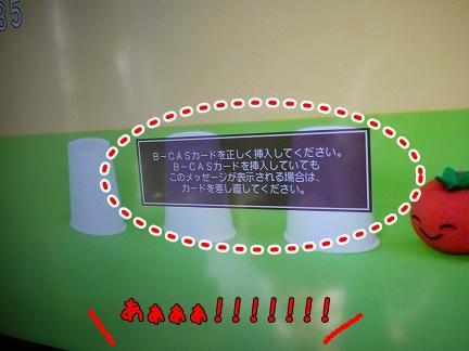 20110928-2.jpg