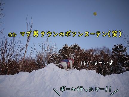 20120122-1.jpg