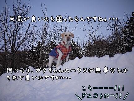 20120122-11.jpg