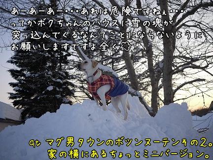 20120122-7.jpg