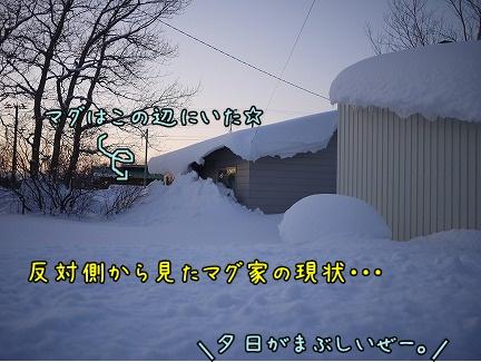 20120122-9.jpg