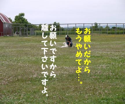 712-9.jpg