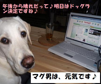 PC2_convert_20090824195323.jpg