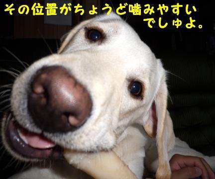 kawaii5.jpg