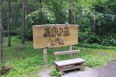 4-6麓郷の森1