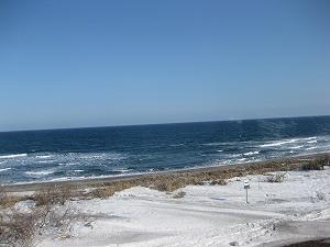 2010-2-18.jpg