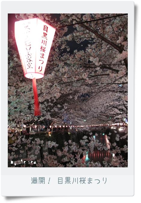 目黒川 桜まつり