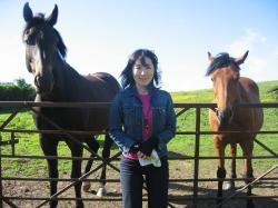 Yoko&Horses
