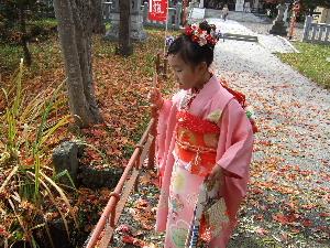 神社カモ3