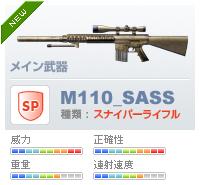 M110_SASS.jpg