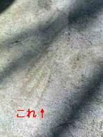 20080220234705