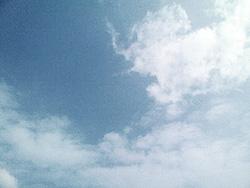 0610272010.jpg