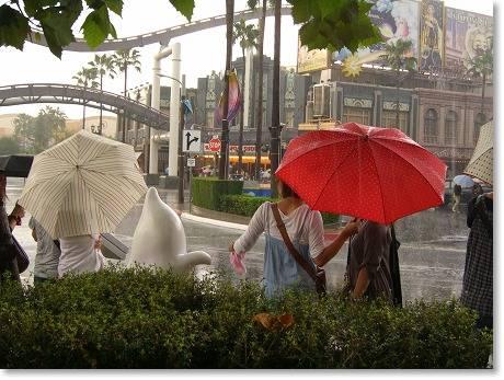 傘の花が・・・