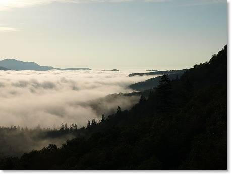 雲海だぁ~