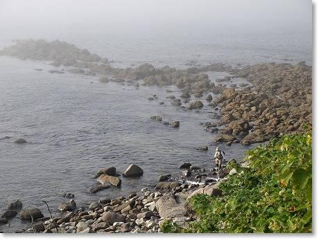 海は・・・霧!