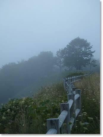 またまた霧!!