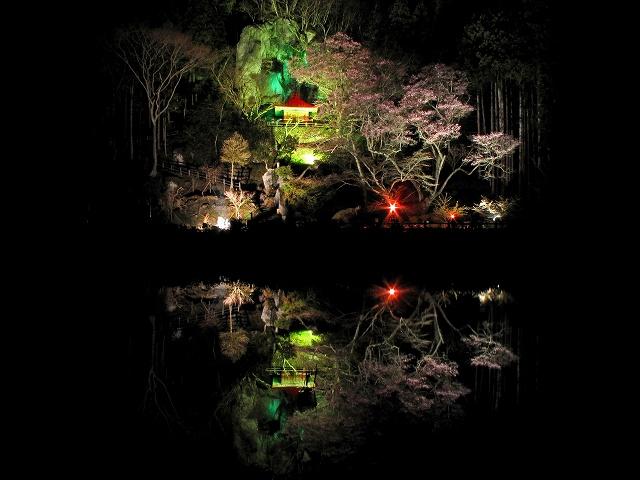 2010.4岩観音桜ライトアップ