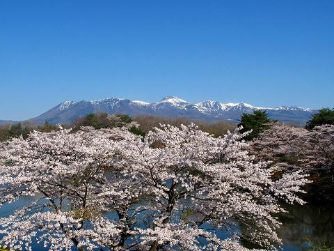 2010.4.りんどう湖