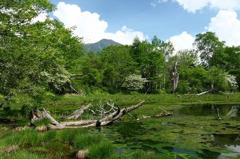 20101.6.日光湯川泉門の池