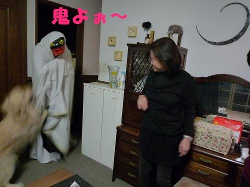 16_20110208164550.jpg