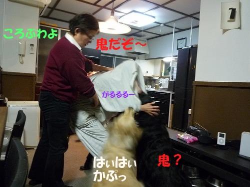 17_20110208164644.jpg
