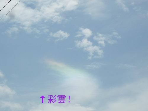 1_20110802162344.jpg