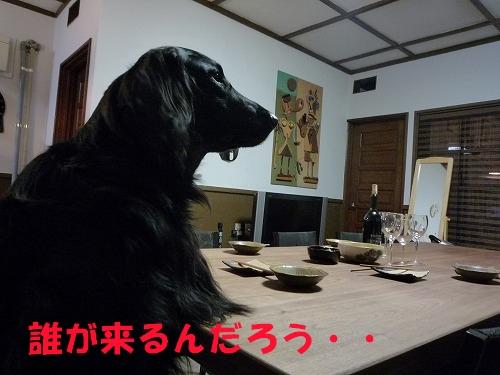 3_20110208164400.jpg