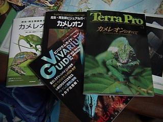 カメレオンの本(日本語版)